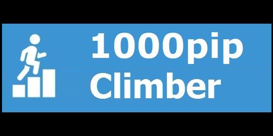 1000pip Climber System logo